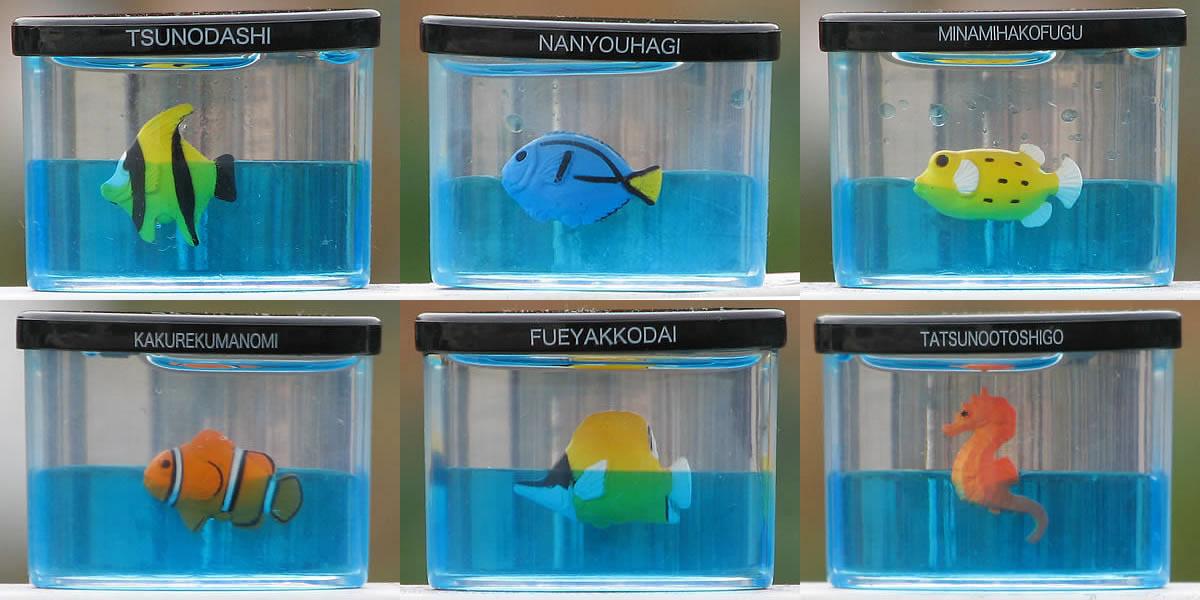 ミニチュア水族館